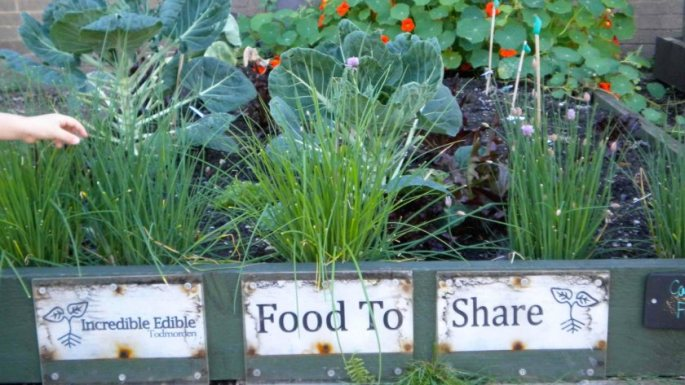 c558_incredible_edible_todmorden_green_route_food_to_share_incroyables_comestibles_w1600