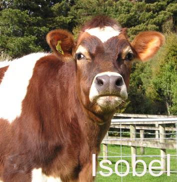 Isobel.png