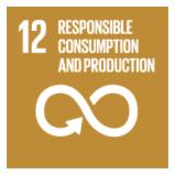 SDG 12 Consumption
